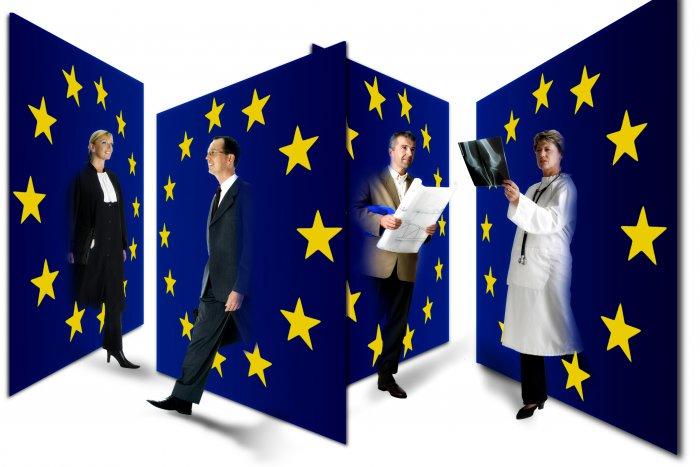 European Mentoring in Social Care